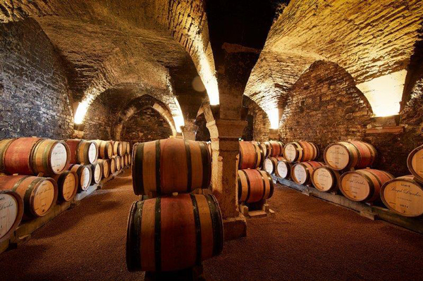 Guided tour and Bourgogne wine tasting lunch - Private luxury tour in Bourgogne