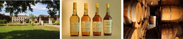 Calvados and cidre tasting