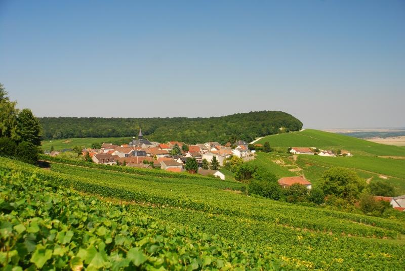Champagne region