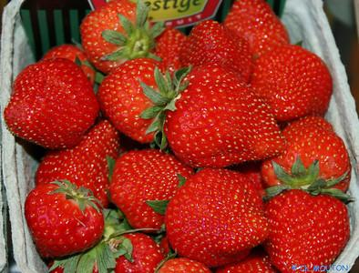 Basket of Sologne strawberries, part of Loire Valley cycling tour B8