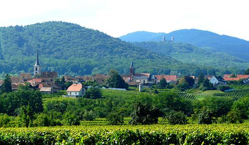 Mittelbergheim-500px.jpg