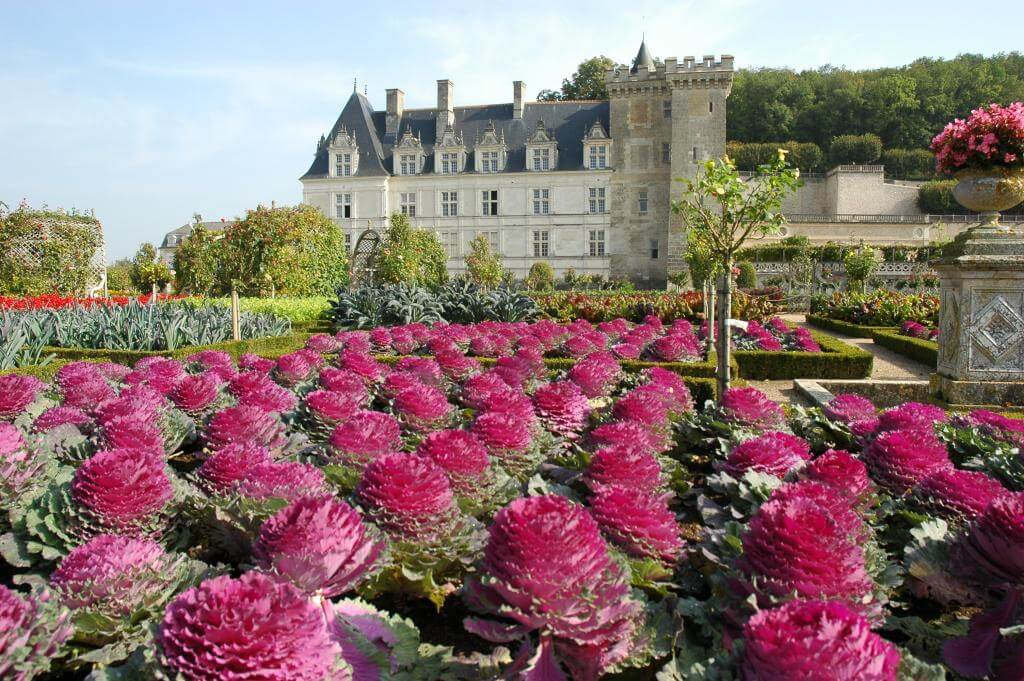 Chateau, Villandry, castle, loire valley