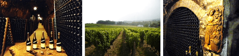 montage-vigneau-chevreau, loire valley