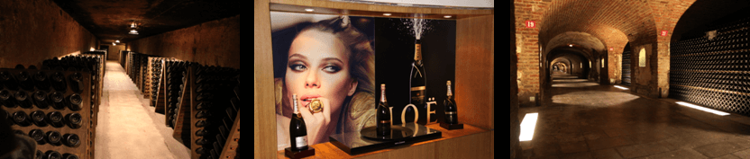 Guided tour and Champagne tasting at Moet and Chandon - Private luxury Champagne tour