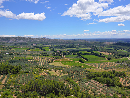 Provence private tour around Alpilles - Les Baux de Provence