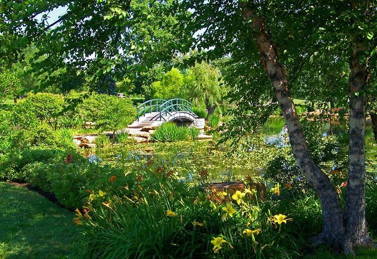 Monet, forest