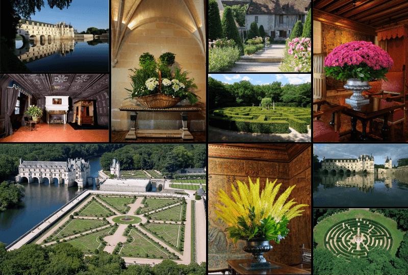 dom-caudron, normandie, flower, garden