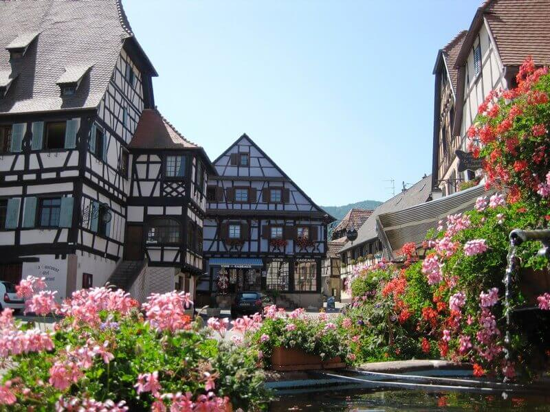 timbering, flower, alsace