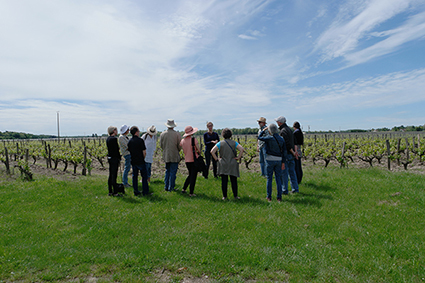 Loire Valley wine tasting lunch, part of guided Loire Valley Day tour D1