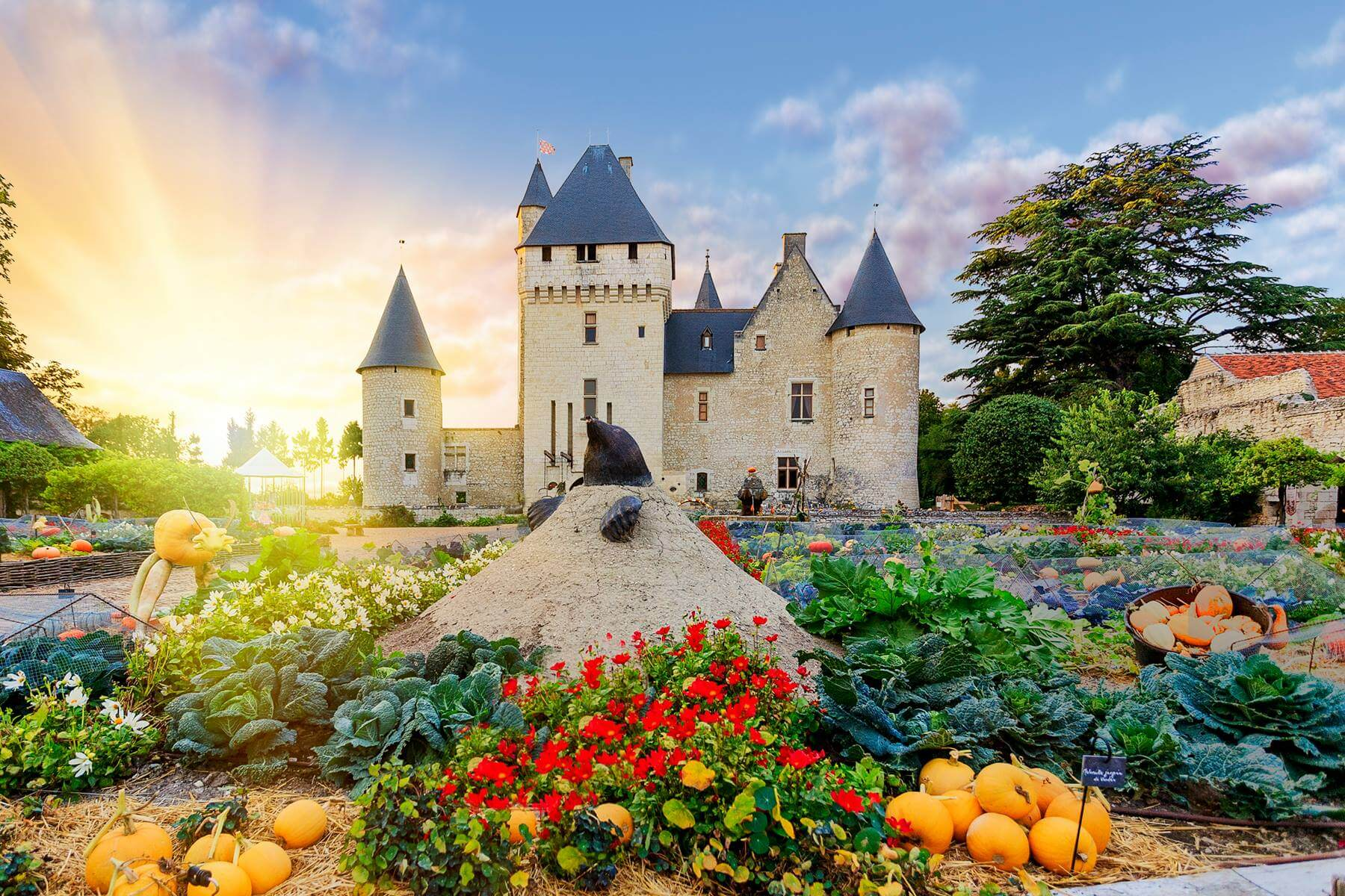 Loire Valley Super stay Comfort, 3 Day Tours and 2 nights in